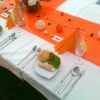 zahradni_party